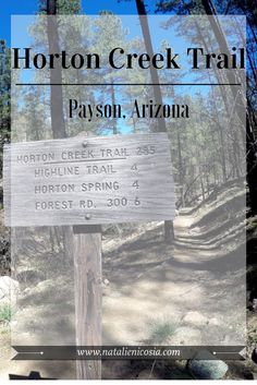 Horton Creek Trail Payson Arizona Horton Spring Arizona Hiking