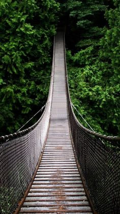 Swing bridge in Borneo Malaysia - Deep in the rainforest, Borneo is the third-largest island in the world and the largest island in Asia. S4 Wallpaper, Bridge Wallpaper, Nature Wallpaper, August Wallpaper, Forest Wallpaper, Photo Wallpaper, Mobile Wallpaper, The Places Youll Go, Places To See