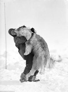 Hihetetlen képek a balsorsú Antarktisz-expedícióról - Hírek - Múlt-kor történelmi magazin
