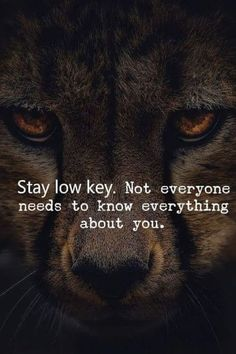 Can we talk about how exactly this is for me? I will literally send my friends & Lion Quotes, Wolf Quotes, Wisdom Quotes, True Quotes, Great Quotes, Motivational Quotes, Inspirational Quotes, Qoutes, Warrior Quotes