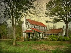 Abandoned house built in 1830. Edgecombe County, NC