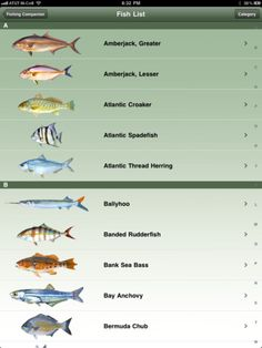 Gulf Fisheries Management Council Regulations. Provides a searchable list of Saltwater Fish in the Gulf of Mexico. View federal recreational and commercial regulations, illustrations, and fish identification data.