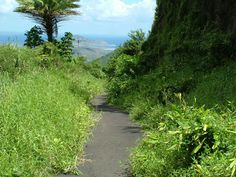 Section of the Old Pali Highway trail, Pali Lookout - Oahu, Hawaii שביל  לא מוכר מהתפית על צוקי פאלי