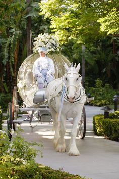 A princess wedding, we've all dreamed about it! When you look at Cinderella, The Little Mermaid, Beauty and the Beast … You imagine yourself very bi Source by ameliamalacari Horse And Carriage Wedding, Horse Wedding, Horse Carriage, Dream Wedding, Wedding Cars, Budget Wedding, Blue Wedding, Wedding Blog, Wedding Flowers