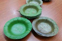 Investigadores tailandeses crean platos desechables biodegradables hechos de hojas de árboles.  Pueden ser una solución a los platos de plástico desechables que tanto daño hacen al medio ambiente.