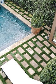 courtyard pool. love the tiles with greenery