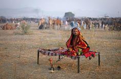 The 2012 Pushkar Camel Fair - The Atlantic