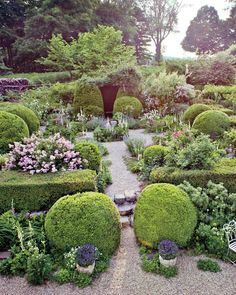 """The entrances to the herb garden are flanked by boxwood balls """"so wonderfully big that you have to squeeze through to get by,"""" Dickey says. This play with scale is echoed in the array of selfseeders in the garden. They range from low-growing Johnny-jump-ups (violas) and creeping thyme to tall shoots of mullein and foxgloves. Additionally, large, blowsy shrubs of old damask and gallica roses burst into flower in June. Dickey and Schell are careful not to mulch in the main gardens, """"simply…"""