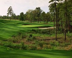 Pinehurst Resort, No. 8,   Pinehurst, NC  No. 97 in Top 100 You Can Play