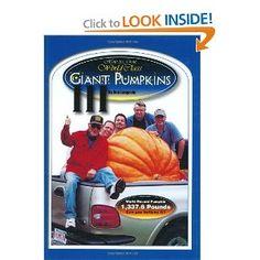 how to grow giant pumpkins youtube