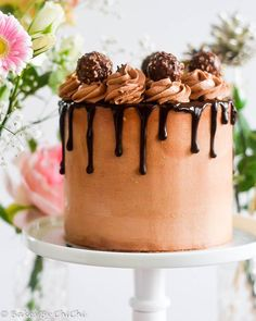 Chocolate Cake Cheesecake with Nutella Frosting – Honest Cooking