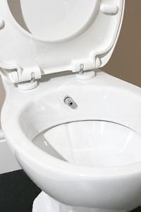 Combined Bidet Toilet has an inbuilt, system, bringing a steady jet of water through a small pipe right underneath the toilet seat. It is plumbed in like a regular toilet and the nozzle is connected to...