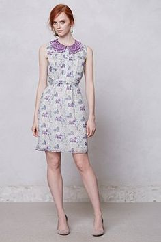 wisteria collared dress.