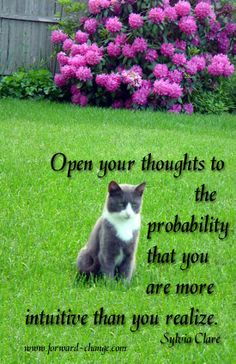 Open yourSelf to the probability that you are more intuitive than you realize ... use your #intuition.