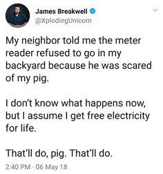 That'll do Pig, that'll do. James Breakwell Xploding Unicorn