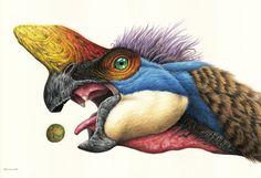 Oviraptor by EsthervanHulsen on deviantART