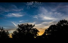 Chemtrail over Kenmore | Flickr - Photo Sharing!©ThompCyn Photography - Cynthia Harris http://www.thompcynphotography.com