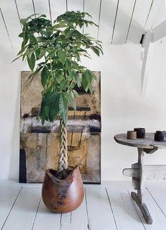 1000 id es sur le th me arbres tress s sur pinterest tresses au crochet tresses et tresses micro. Black Bedroom Furniture Sets. Home Design Ideas
