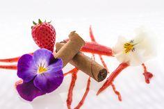 Cigar dessert by Giorgio Bona on 500px