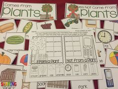 What comes from plants and what does not come from plants? Plants {Print & Play Pack}