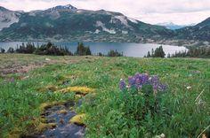 Tweedsmuir South Provincial Park