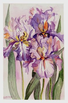 Watercolor Three Irises Giclee Print by watercolorwork on Etsy, $17.97