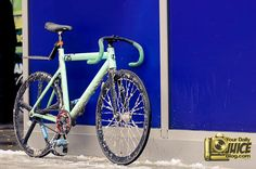 Iced out Leader 725TR