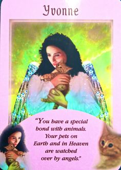 Yvonne, from the Messages From Your Angels Oracle Card deck, by Doreen Virtue, Ph.D This takes Forever Alone to an entirely new level. This is not a good card to pull. Also, does  the green represents the eternal stench of cat piss or is that the aura color of batshit nuts?