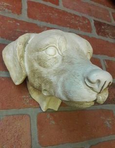 Labrador Hunting Dog Head Wall Hanging Mount Art Decor Face 3D Resin Taxidermy  #Contemporary