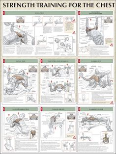 Strength Training for the Chest | Flickr - Photo Sharing!