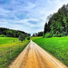 Habt einen wunderbaren Start ins Wochenende! #happyweekend #lebeninadliswil #livinginadliswil #adliswil #stadtadliswil #felsenegg… Happy Week End, Country Roads, Instagram, Round Round, Nature, Life