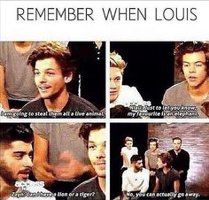 Why Louis is my favorite XD