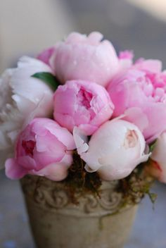 little bouquet of peonies Peony Rose, Peony Flower, My Flower, Most Beautiful Flowers, Fresh Flowers, Pretty Flowers, Simply Beautiful, Deco Floral, Arte Floral