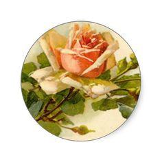 Catherine Klein's Vintage Peach Rose - Sticker