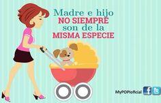 Animalista #compartirvideos.es #videosdivertidos