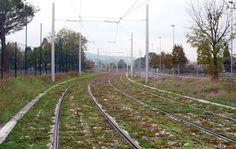 Green Tramway Florence-Scandicci (Tuscany, Italy)3