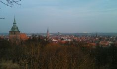 Kalkberg in Lüneburg.
