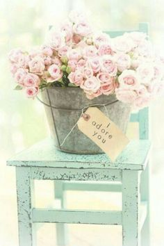 pale pink roses oh my gosh why do I love pics like this