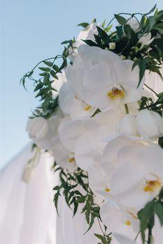 6 - phalaenopsis orchid | the prince st kilda wedding | circa wedding | styleanddiscourse.com
