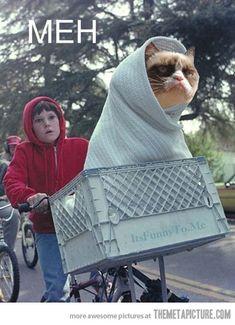 Grumpy E.T.. Grumpy Cat #GrumpyCat #Humor #Meme