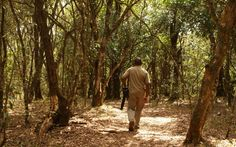 Oloolua Nature Trail: Perfect Spot to Reboot and be Inspired. #Travel #Nairobi