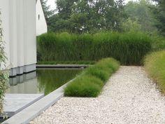 grasses and gravel - Thomas Leplat
