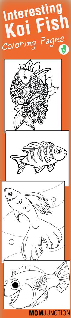 10 Interesting Koi Fish Coloring Pages For Your Toddlers