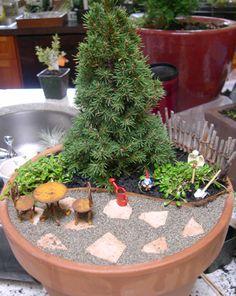 Kris' Miniature Garden
