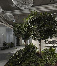 Gallery of Skanska HQ Budapest / LAB5 architects - 18