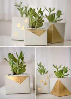 DIY Gold Leaf Cement Planters