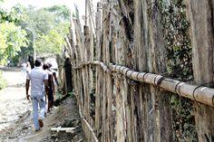 Camino al Centro Cultural de Palenque