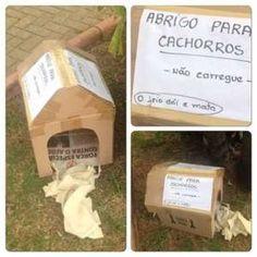 """""""O Grito do Bicho"""": Prefeitura de Contagem retira casinhas de cachorro..."""