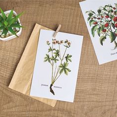 Cheap invitation decoration, Buy Quality invitation salutations directly from China card process Suppliers: size:14.3*9.3cm30pcs= 30style *1pcs
