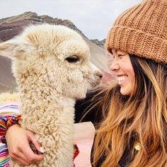 Tours a Machu Picchu y Cusco - Peru Pachamama Travel Alpacas, Cute Bestfriend Pictures, Cute Baby Animals, Funny Animals, Ushuaia, Cute Llama, Llama Alpaca, Machu Picchu, My Animal
